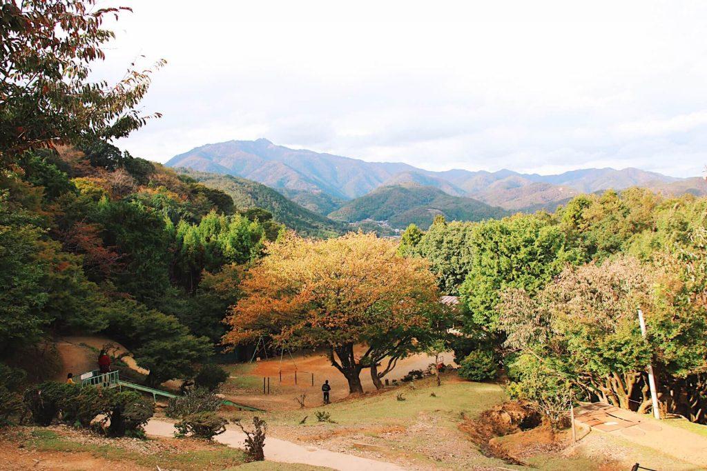 Iwatayama Monkey Park, kyoto itinerary 2 days