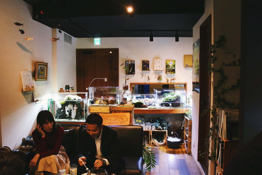 Aquarium bar kind, two week japan itinerary