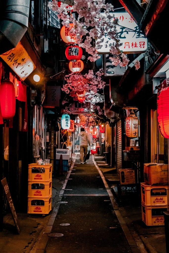 Omoide Yokocho Memory Lane Tokyo