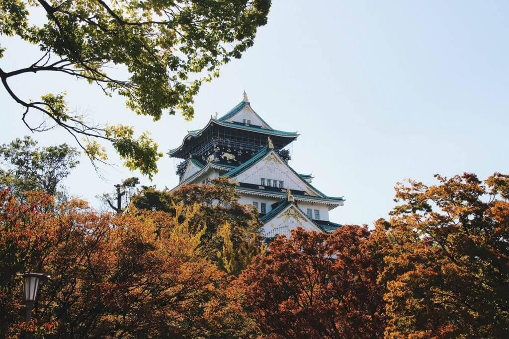 three weeks in Japan